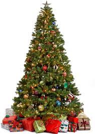 sales on trees chrismas 2017