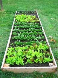 Raised Vegetable Garden Ideas Raised Veggie Garden Ideas For Your Home Veggie Garden Use Logs To