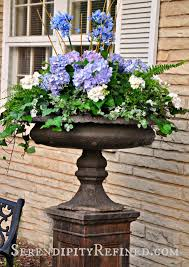 serendipity refined blog blue and white outdoor summer urn patio