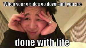 Life Meme - when your grades go down and you are done with life meme meme rewards