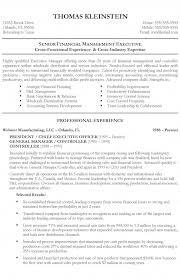 chief executive officer resume exle resume exles chief