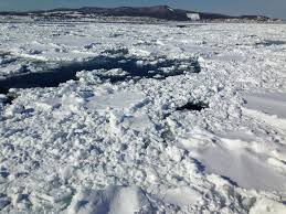 abashiri family a goal based comparison of drift ice viewing tours