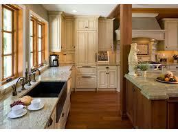 Mixed Wood Kitchen Cabinets Black Cast Iron Kitchen Sink Kitchen Glass Front Cabinets Granite