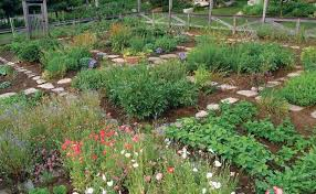 who says a kitchen garden can t be beautiful gardening