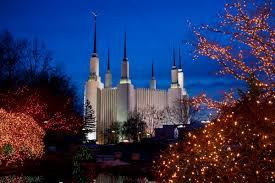 christmas trees dc christmas lights decoration
