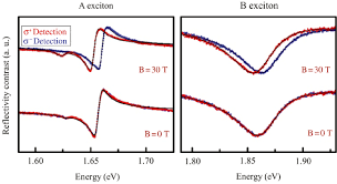 optical properties of atomically thin transition metal