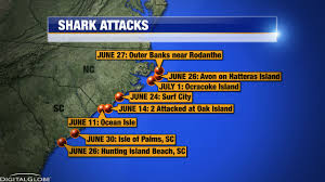 Map Of Outer Banks Nc Interactive Map Expert Says Record Breaking Year Of Shark