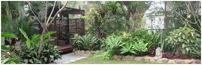 Small Tropical Garden Ideas Tropical Gardens Modern Small Garden