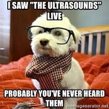 Hipster Dog Meme - hipster dog meme generator