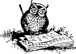 clipart an owl drawing