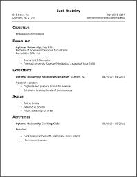curriculum vitae template leaver resume resume for first job template bad resume exle good sle great