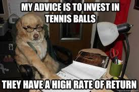 Advice Memes - financial advice dog memes quickmeme
