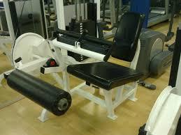 how to do machine leg curls beginner workout routines