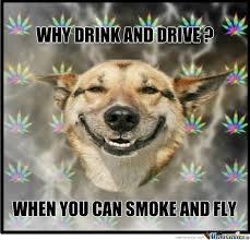 Stoned Dog Meme - stoner dog by cylinder meme center