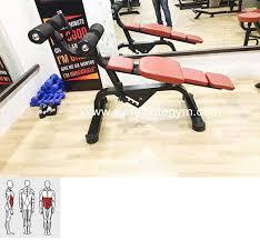Adjustable Abdominal Bench Adjustable Abdominal Bench Manufacturer In India Syndicate Gym