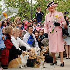 queen elizabeth dog the queen s corgis love meghan markle too vogue