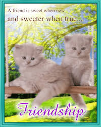 friendship cards friendship card free special friends ecards greeting cards
