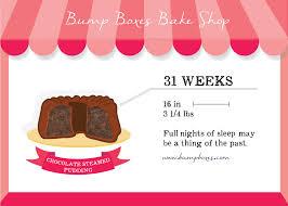 week by week bump boxes bump boxes pregnancy subscription