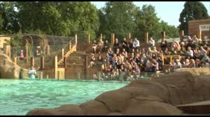 visit zsl zoo for a family day out