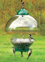 squirrel proof bird feeders feed the birds not the squirrels