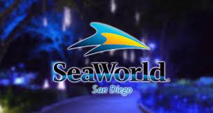 seaworld u0027s christmas celebration kicks off this month osidenews