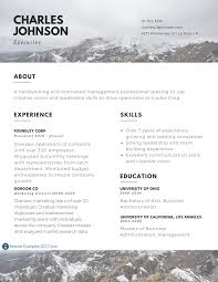 Best Resume Templates On Canva by Best Executive Resume Examples Resume For Your Job Application
