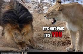 Pms Meme - it s not pms i can has cheezburger funny cats cat meme