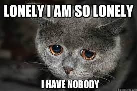 Lonely Meme - lonely i am so lonely i have nobody lonely quickmeme