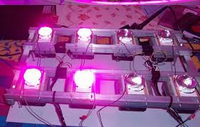 horticultural led grow lights diy led grow light kit for horticulture and vegetables