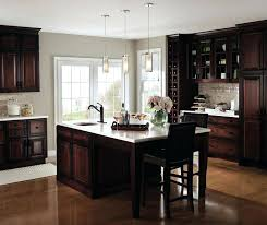 Smoked Glass Cabinet Doors Kitchen Cabinet Doors With Frosted Glass Inserts Dark Cherry