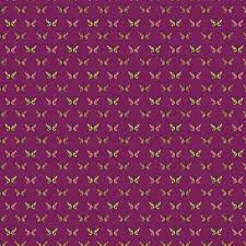 butterfly pattern free stock photo public domain pictures