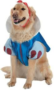 Small Dog Halloween Costumes Ideas Pet Snow White Dog Costume Small Dogs Disguise Http Www