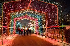 Zoo Lights Schedule by Best Spots To Spy Chicago Fall Colors U0026 Holiday Lights Choose