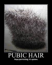 asian pubic hair funny outrageous memes and photos pubic hair