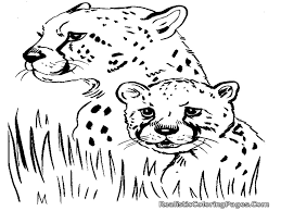 100 paw print coloring pages coloring cheetah print coloring
