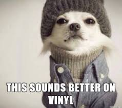 Hipster Dog Meme - things hipsters say meme on imgur
