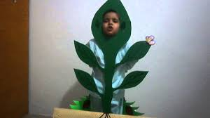 fancy dress of evana as a plant in nature youtube