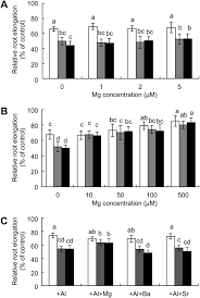 up regulation of a magnesium transporter gene osmgt1 is required