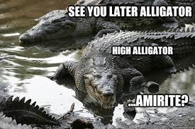 Alligator Memes - see you later alligator high alligator amirite high