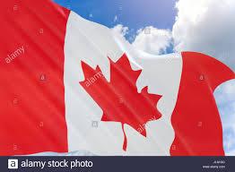 canada day flag stock photos u0026 canada day flag stock images alamy