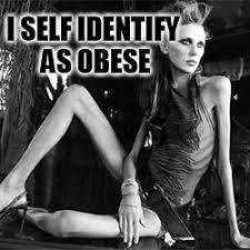 Anorexia Meme - anorexia meme generator imgflip