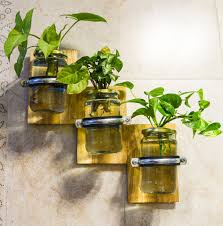 Mason Jar Wall Planter by Buy Set Of 3 Jar Wall Mounted Planter U2022 Barish