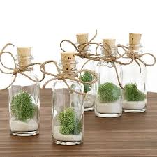plant wedding favors bottle favor