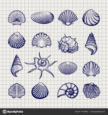ball pen sketch sea shells u2014 stock vector vectortatu 131132880