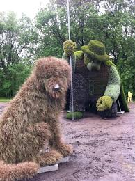 Topiary Dog Plants Hortus 2 There Is Life After Retail Page 4