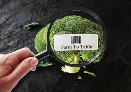 farm to table concept farm to table concept stock image image of table agriculture