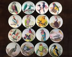 bird cabinet knobs etsy
