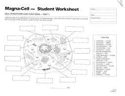cells mrs musto 7th grade life science