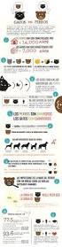 200 best 3 1 la familia y mascotas images on pinterest teaching