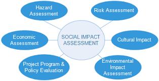 association si e social social impact assessment